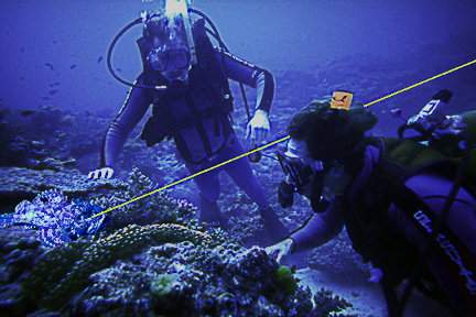 scuba instructor uses green laser as pointer